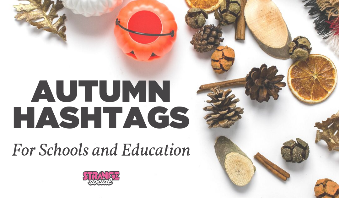 Autumn Hashtags for Schools and Education
